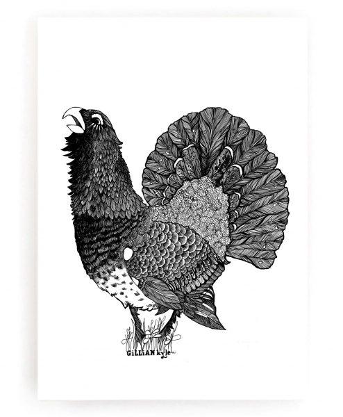Art Prints by Gillian Kyle