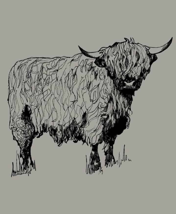 Gillian Kyle, Scottish men's clothing, Scottish unisex clothing, Scottish men's t-shirt, Scottish unisex t-shirt, Highland cow print