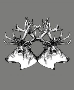 stags-t-shirt-detail