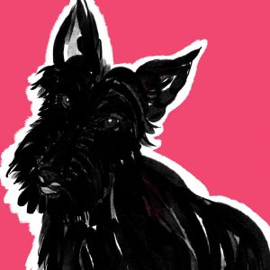 gillian Kyle big scottie dog suitcase print detail by Gillian Kyle
