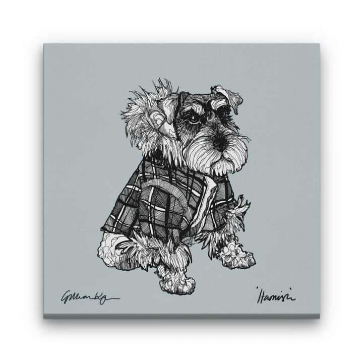 miniature schnauzer canvas print by Gillian Kyle