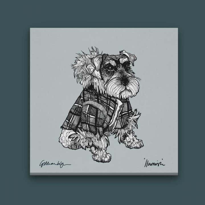 gillian kyle scottish art prints and canvases, love scotland range, Hamish square canvas with miniature schnauzer dog