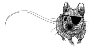 Robert burns to a mouse illustration by gillian Kyle