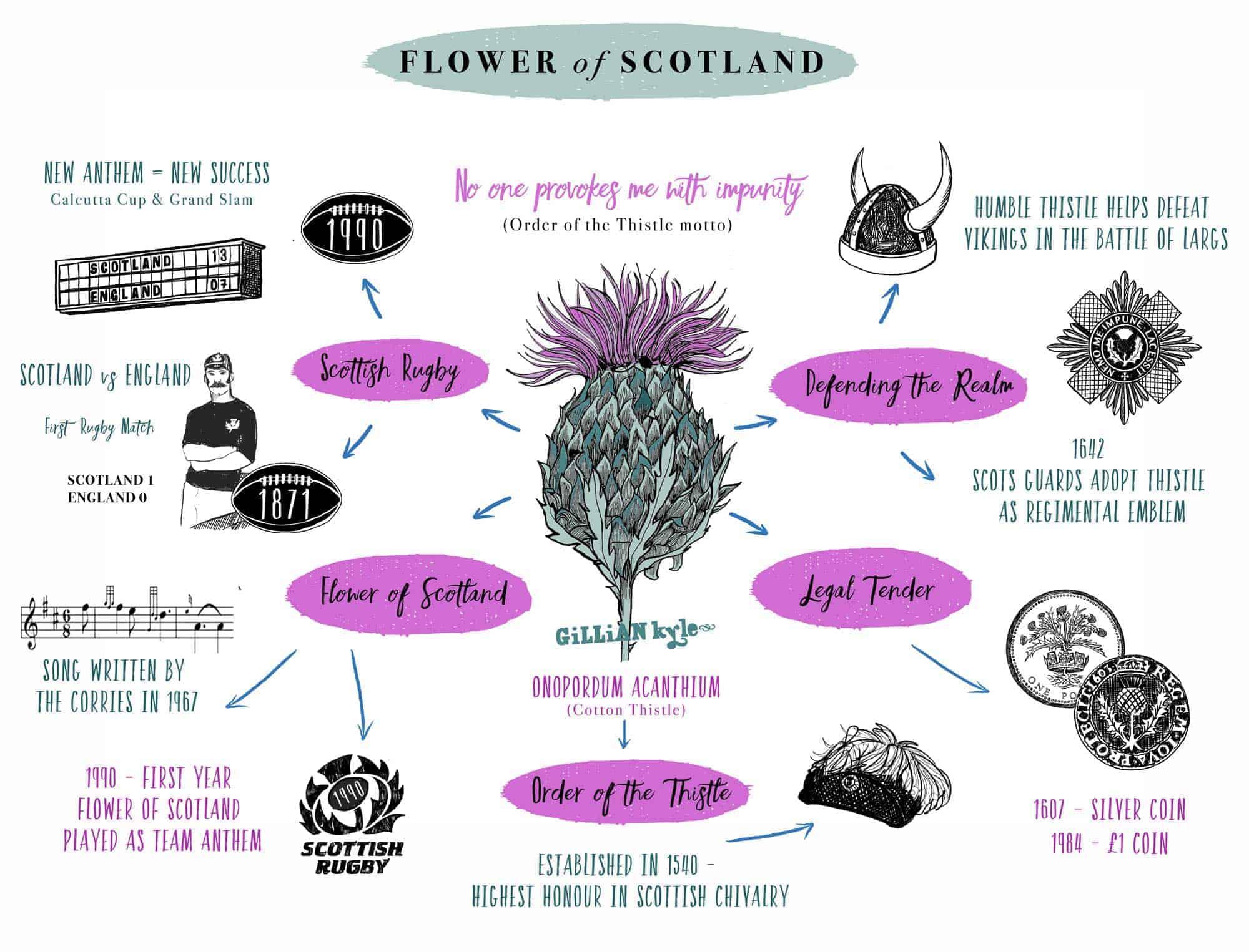Scotland's National Flower - Thistle - YouTube