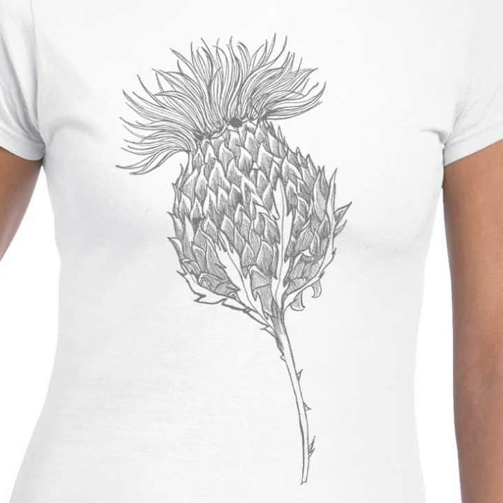 Flower of Scotland Scottish thistle t-shirt for women in white by Gillian Kyle