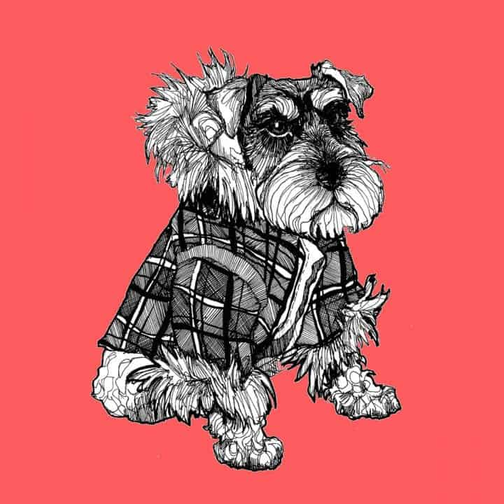 Hamish the Miniature Schnauzer suitcase in red by Gillian Kyle - print detail
