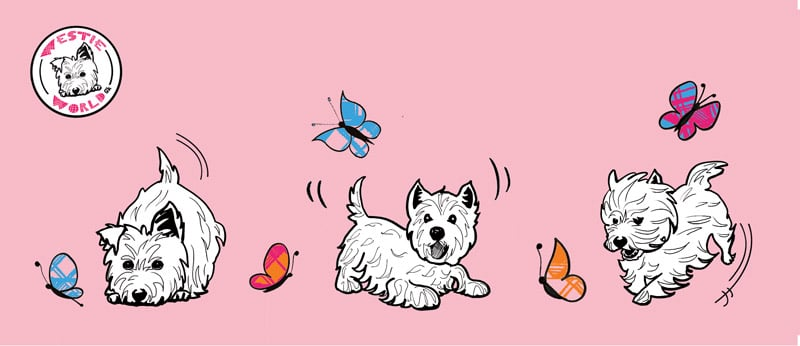 Westie World West Highland Terrier (Westy) illustrations by Gillian Kyle